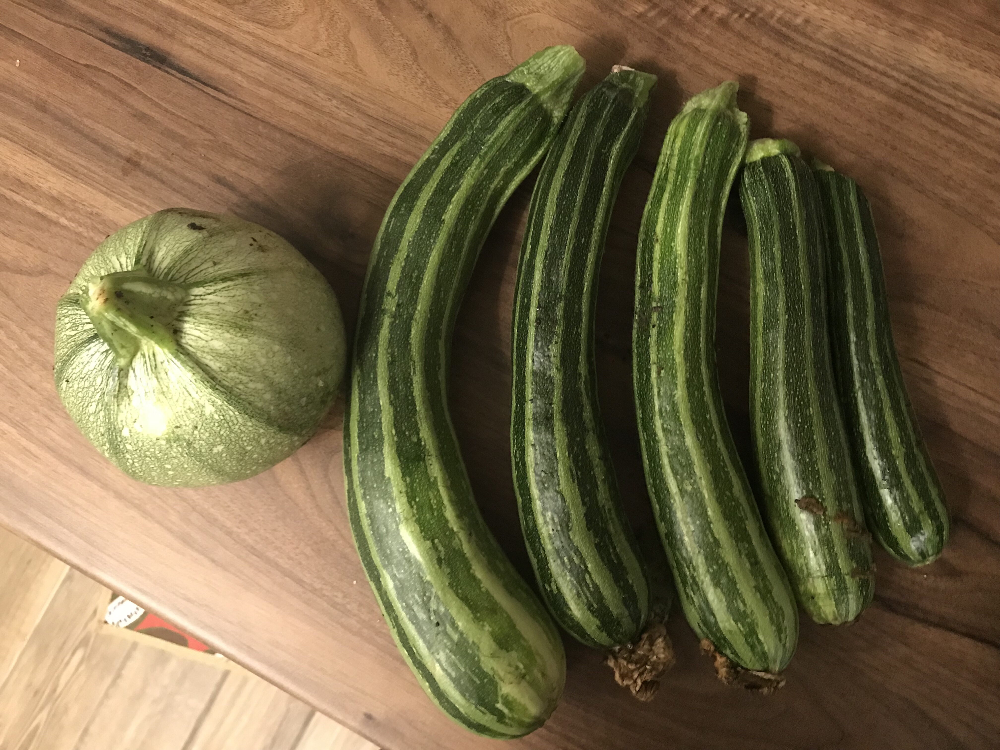 Lots of courgettes
